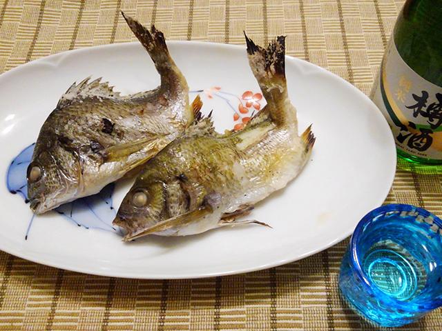 チンチン(クロダイの子供)の塩焼き