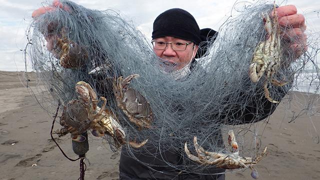 ヒラツメガニ釣り