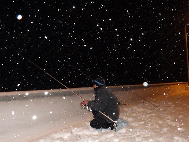 極寒の中獲物を狙う