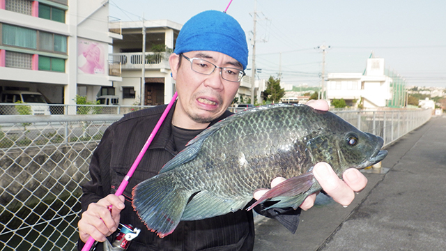 ティラピア釣り